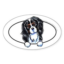 CKCS Tricolor Peeking Bumper Decal