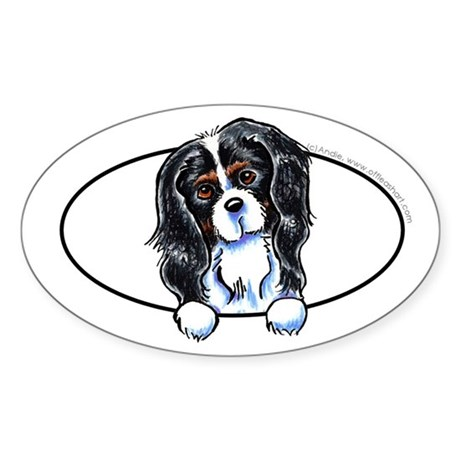 CKCS Tricolor Peeking Bumper Sticker (Oval)