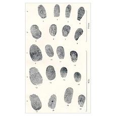 Sets of fingerprints Poster