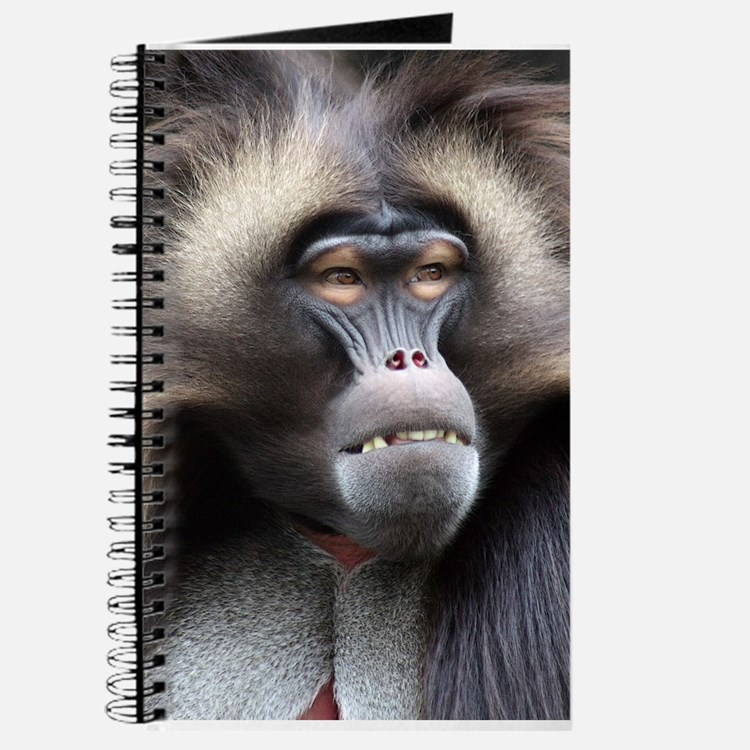 Gelada Baboon Journal