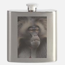 Gelada Baboon Flask