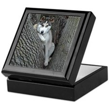 Husky Guarded Keepsake Box