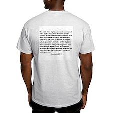 """""""Bible on a Plane"""" Ash Grey T-Shirt"""