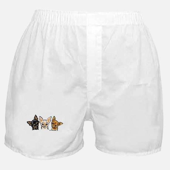 3 Smooth Chihuaha Boxer Shorts