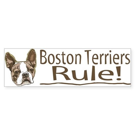 Boston Terriers Rule Bumper Sticker
