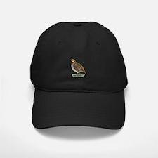 Bobwhite Quail Hen Baseball Hat