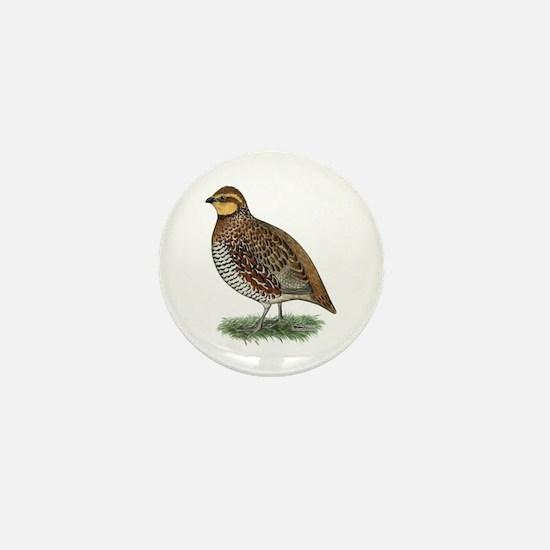 Bobwhite Quail Hen Mini Button