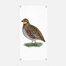 Bobwhite Quail Hen Banner