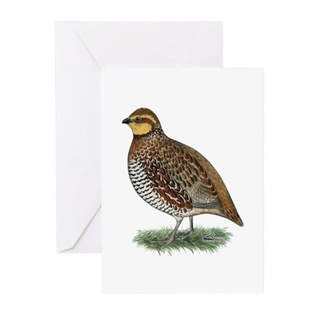 Bobwhite Quail Hen Greeting Cards (Pk of 10)