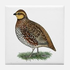 Bobwhite Quail Hen Tile Coaster