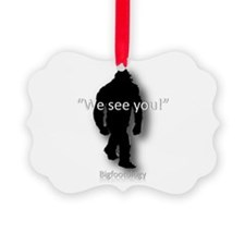 We see you! Picture Ornament