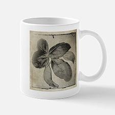 I Love the Herb Basil Mug