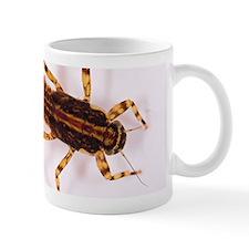 <i>Ephemerella</i> Mayfly Nymph Mug