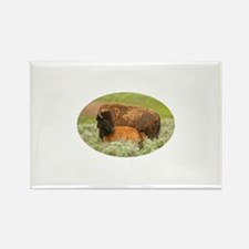Baby Bison and Mom Rectangle Magnet