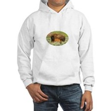Baby Bison and Mom Hoodie