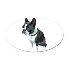 Painted Boston Oval Car Magnet