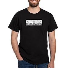 End the Occupation Ash Grey T-Shirt T-Shirt