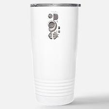 DEVONIAN FOSSILS Travel Mug