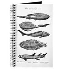 FISH FOSSILS Journal