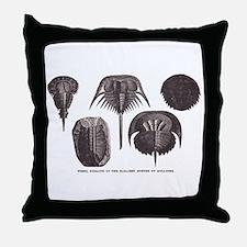 Trilobites Throw Pillow