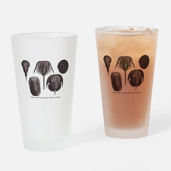 Trilobites Drinking Glass