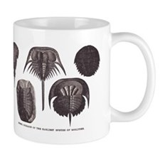 Trilobites Mug