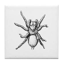 Tarantula Tile Coaster