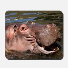 Happy Hippo Mousepad