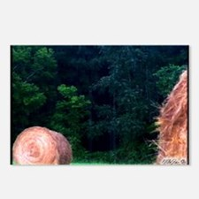 8 - Massac County Hay Bale Postcards