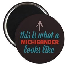 Michigander Looks Like Magnet