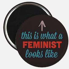 Feminist Looks Like Magnet