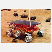 Model of the Mars Pathfinder rover Sojourner