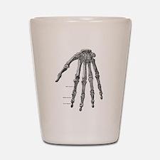 Skeleton hand Shot Glass