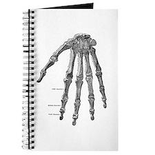 Skeleton hand Journal
