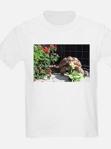 Sulcata Tortoise T-Shirt
