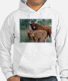 Two highland calves with mama cow Hoodie