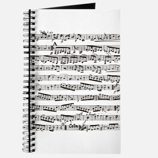 Music notes Journal