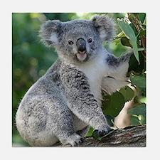 Cute koala Tile Coaster