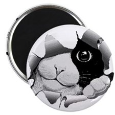 PeekABooKitty(white) Magnet