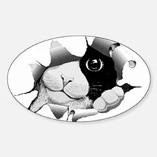 PeekABooKitty(white) Oval Decal