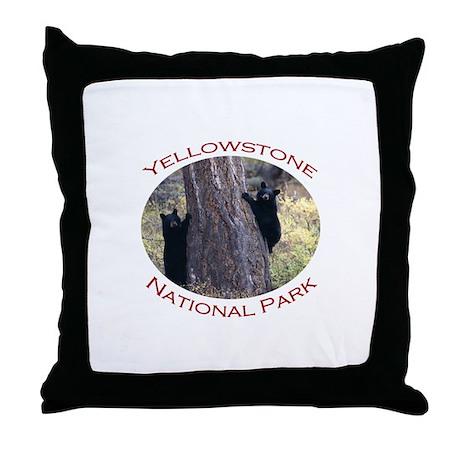 Yellowstone National Park...Black Bear Cubs Throw