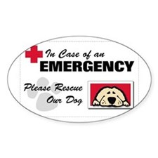 Please Rescue Dog Rectangle Decal