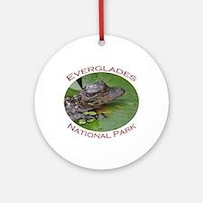 Everglades National Park...Baby Alligator Ornament