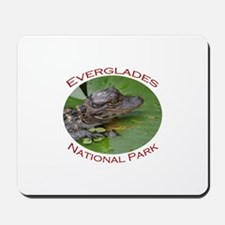 Everglades National Park...Baby Alligator Mousepad