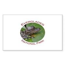 Everglades National Park...Baby Alligator Decal