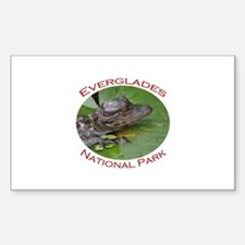 Everglades National Park...Baby Alligator Decal