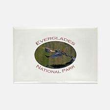 Everglades National Park...Anhinga Takeoff Rectang
