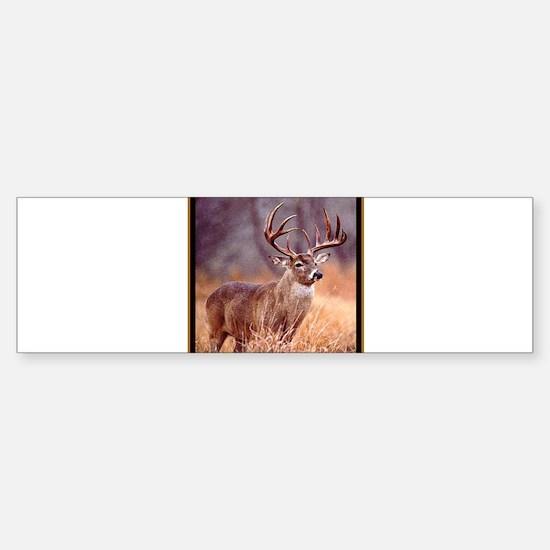 Wildlife Deer Buck Sticker (Bumper)