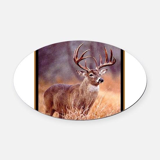 Wildlife Deer Buck Oval Car Magnet