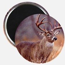 "Wildlife Deer Buck 2.25"" Magnet (100 pack)"